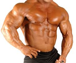 is tren the best steroid