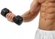 Fibras musculares e o ganho de massa magra