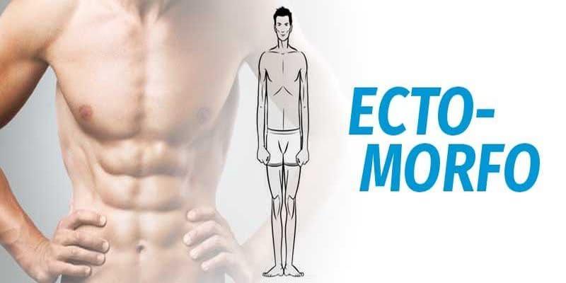 Treino para ectomorfo